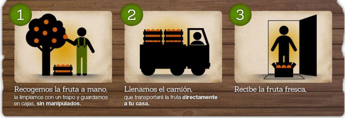 Naranjas online de Valencia 3